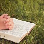 Pastoral Catequética – Perseverança